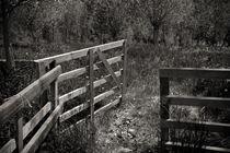 fences von Federico Paoli