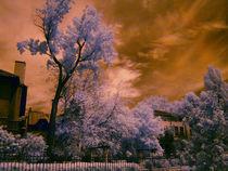 Infrared-park