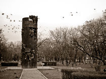 tower with birds by Mihail Leonard Bodor