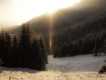 winter sun by Mihail Leonard Bodor