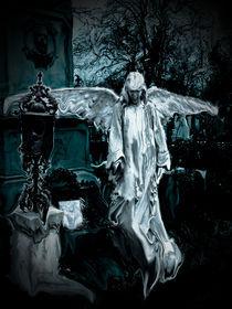 fallen angel by Mihail Leonard Bodor