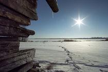 WINTER 3 von Andrej IVANOFF