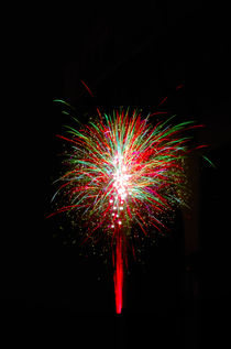 Fireworks buquet by Andrea Capano