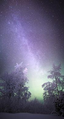 Star trail by Antti Pietikäinen