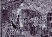 poultry market#Kudus_Central Java