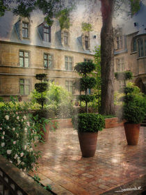 jardin Parisien by Roland  Vanoverberghe