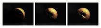 planet apple triptychon I von augenwerk
