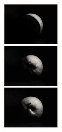 planet apple triptychon III von augenwerk