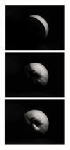 Planet-apple-sw-3-hoch