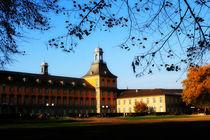 Bonn University von merla-merula