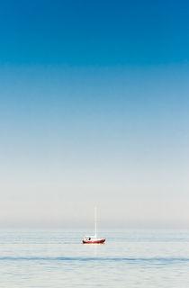 Skipper by Sebastian Petrescu