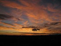 Arizona Sunset von Raphael Temblador