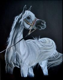 Arabian beauty-1 von silvia  ivanova