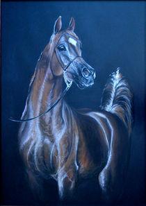 Arabian beauti-2 von silvia  ivanova