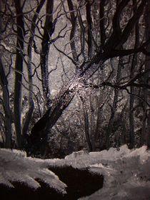Verschneiter Wald  by Heinrich Reisige