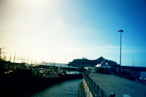 Madeira _ Marina by Alda Silva