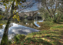 OLD ROMAN BRIDGE REFLECTION by Tiago Pinheiro