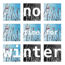 no•time•for•winter by anya  garienchick