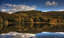 Autumnal Reflections by Emma Wright