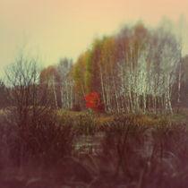 red by ziom