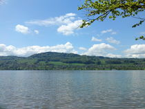 Hallwillrsee/Lake Hallwil by Carina White