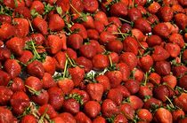 San Francisco - Strawberrys by Luis Henrique de Moraes Boucault