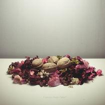 Dead Nest Phase I von Francesco Rodan Fabbri