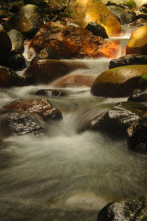 River's Flow von Japrin Thomas