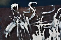 Weiße Flamingos im Teich ... Frust eines Anstreichers von Almut Rother