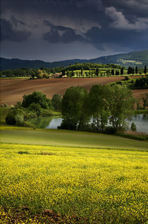 Tuscan Fields von Ken Crook