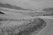 Feldweg von Thomas Brandt