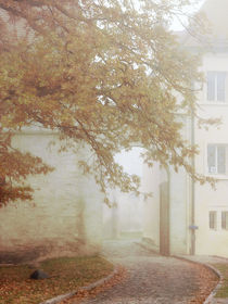 November am Schloß by Franziska Rullert