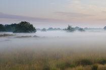 A foggy sunrise von Wicek Listwan