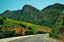 California - Green Road by Luis Henrique de Moraes Boucault