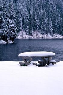 Winter Picnic 332 von Patrick O'Leary