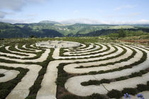 Labyrinth in Hogsback, South Africa von Neil Overy