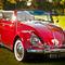 Vintage-bug-2