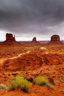 Monument Valley von David Pinzer