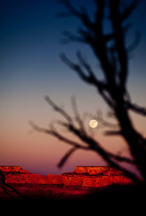 Full moon over the Canyon von David Pinzer