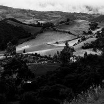 Crops in Ubate by Fabian Medina