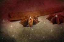 Sternen Glanz von Tanja Riedel