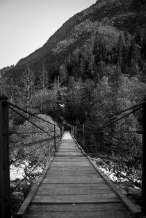 Slovenia-bridge-1