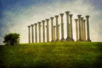 Capitol Columns von Susan Isakson