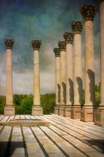 Capitol Columns Three