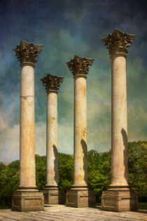 Capitol Columns Four by Susan Isakson