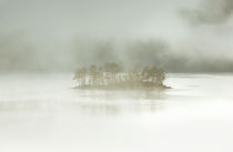 november island by Norbert Maier