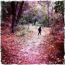 boy in woods von Tony Tibbitts