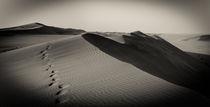 Namib2 von Thomas Prinz