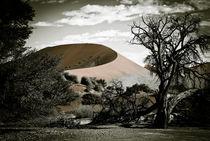 Namib1 von Thomas Prinz