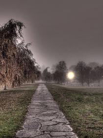 Skogskyrkogården HDR03 by Gustavo Oliveira